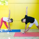 Yoga Santé Éducation YSE 1