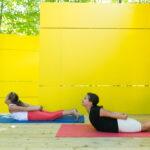 Yoga Santé Éducation YSE 3