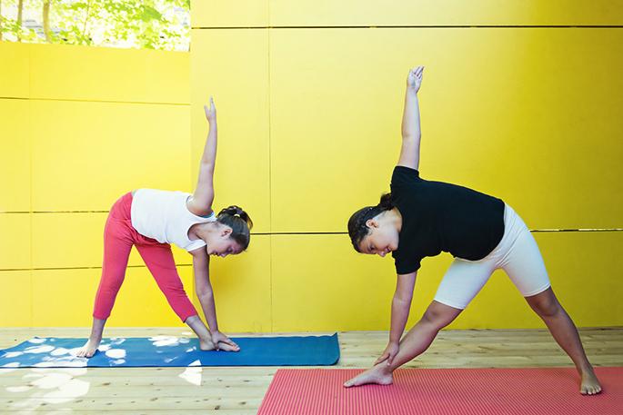 Yoga Santé Éducation YSE